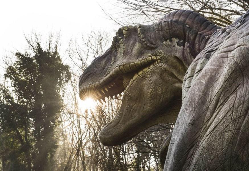 dinosauri napoli